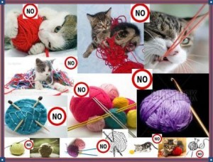 Best Darn Yarn Tenders.Thumbnail.no On Kittens And Needles And Yarn.compressed For Web